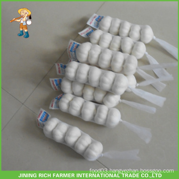Good Price Shandong Fresh Snow White Garlic 5.5CM
